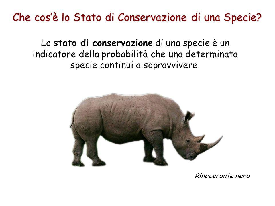 Che cos'è lo Stato di Conservazione di una Specie