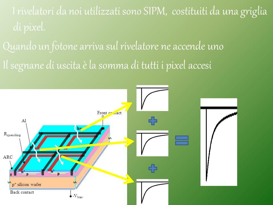 I rivelatori da noi utilizzati sono SIPM, costituiti da una griglia di pixel. Quando un fotone arriva sul rivelatore ne accende uno Il segnane di uscita è la somma di tutti i pixel accesi