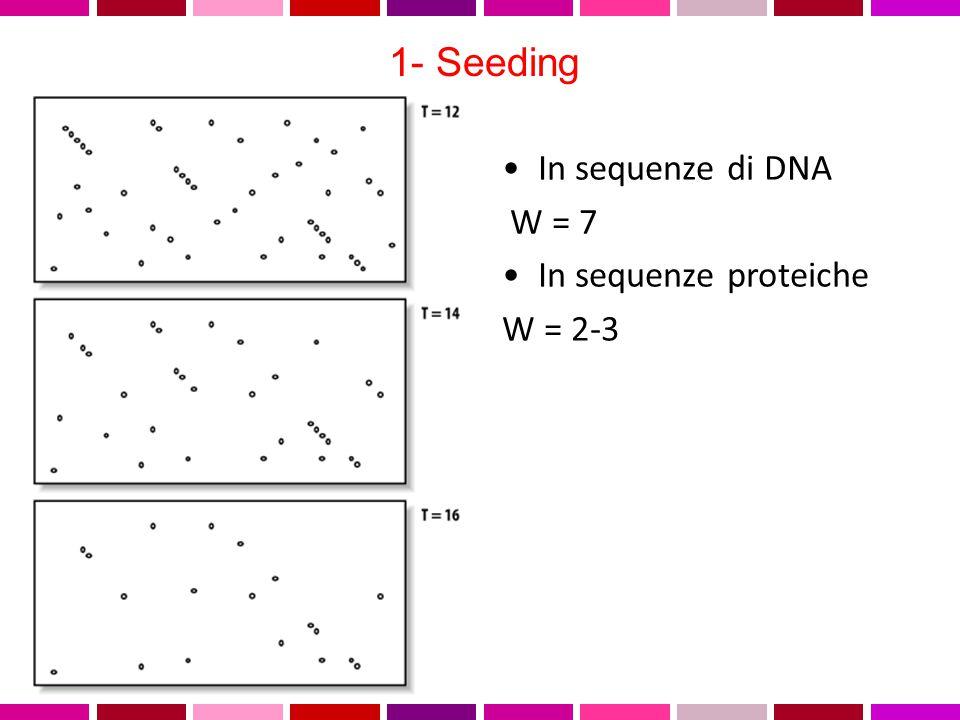 1- Seeding In sequenze di DNA W = 7 In sequenze proteiche W = 2-3