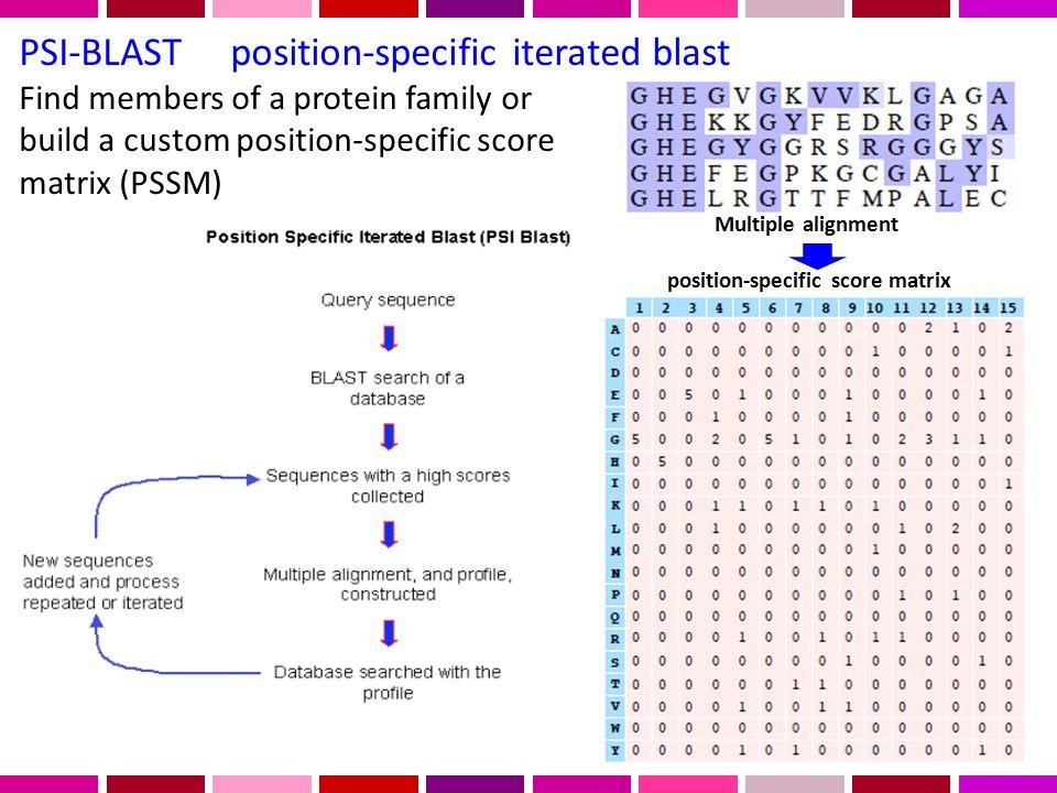 position-specific score matrix