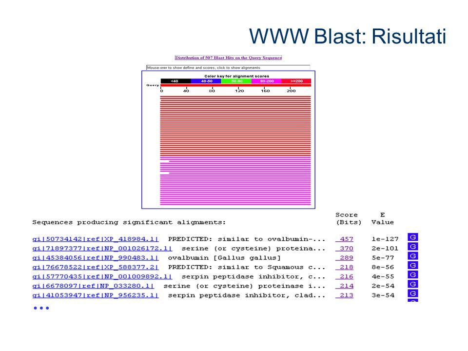 WWW Blast: Risultati …