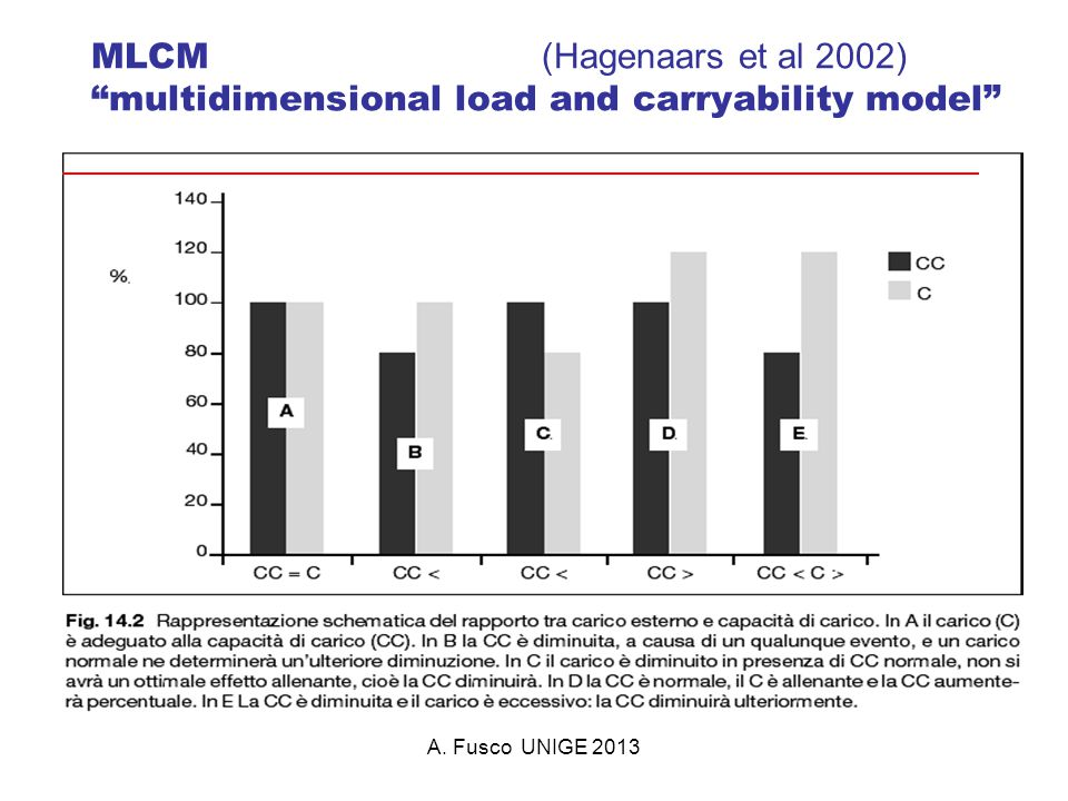 MLCM (Hagenaars et al 2002) multidimensional load and carryability model