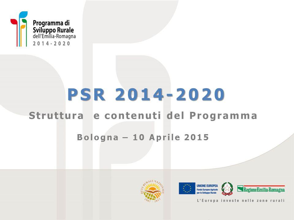 Struttura e contenuti del Programma
