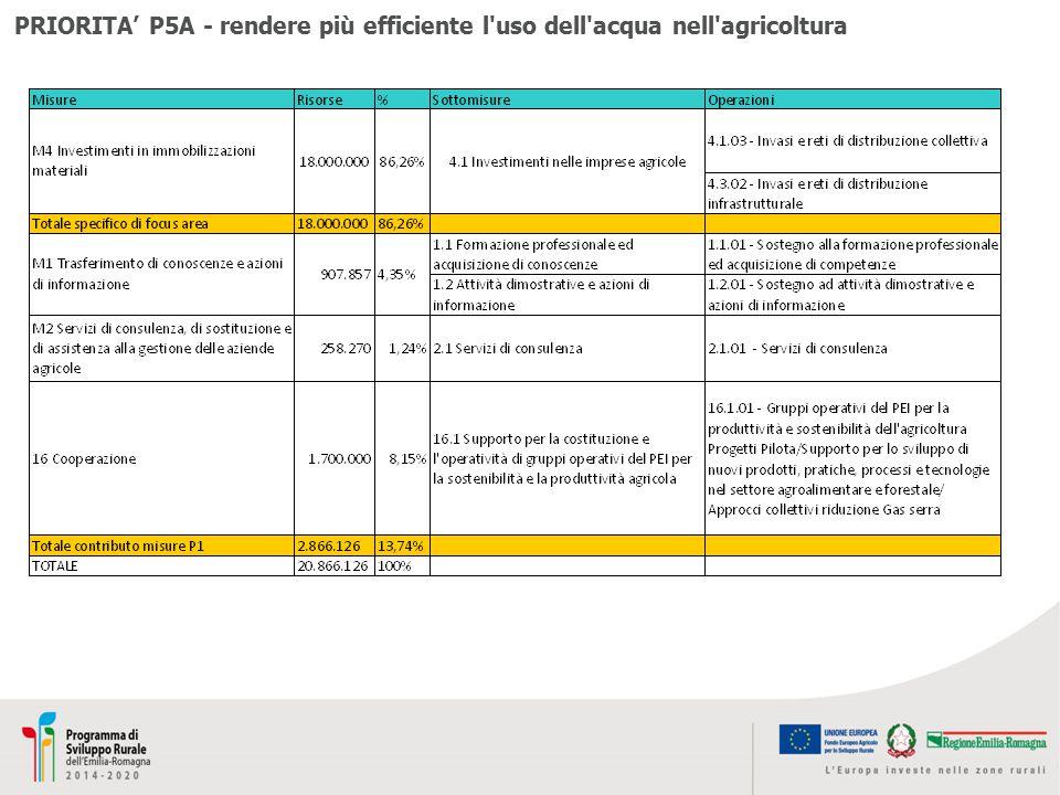 PRIORITA' P5A - rendere più efficiente l uso dell acqua nell agricoltura