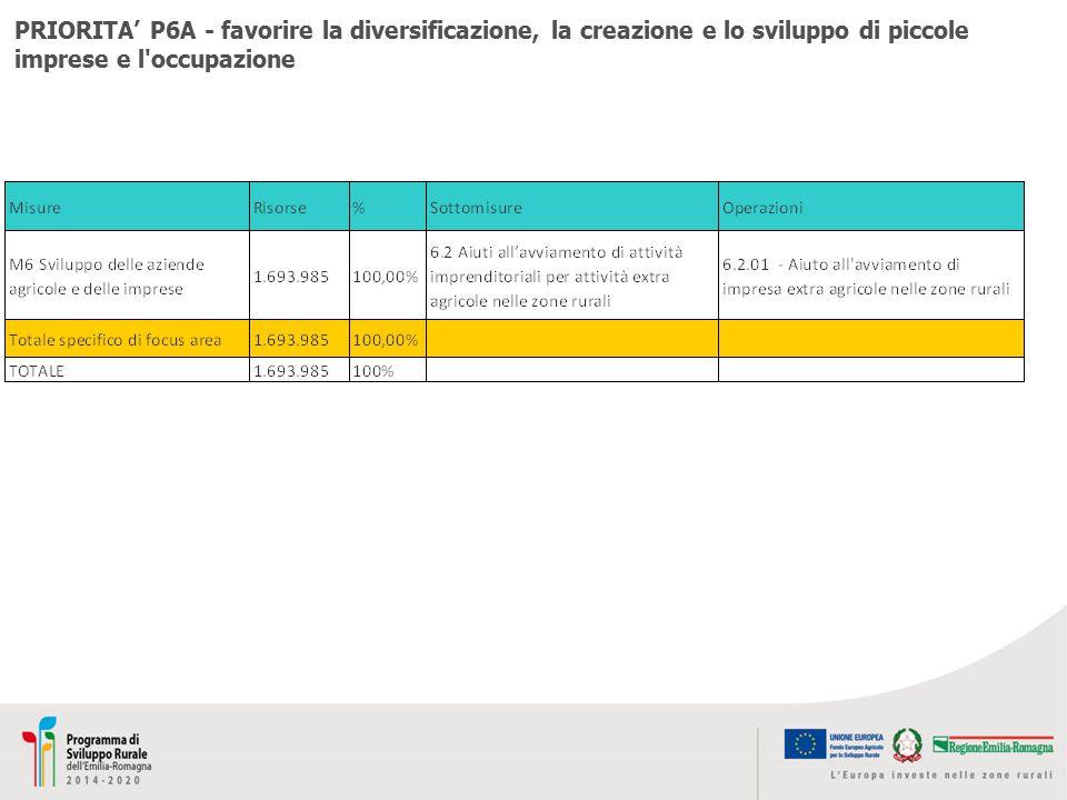 PRIORITA' P6A - favorire la diversificazione, la creazione e lo sviluppo di piccole imprese e l occupazione