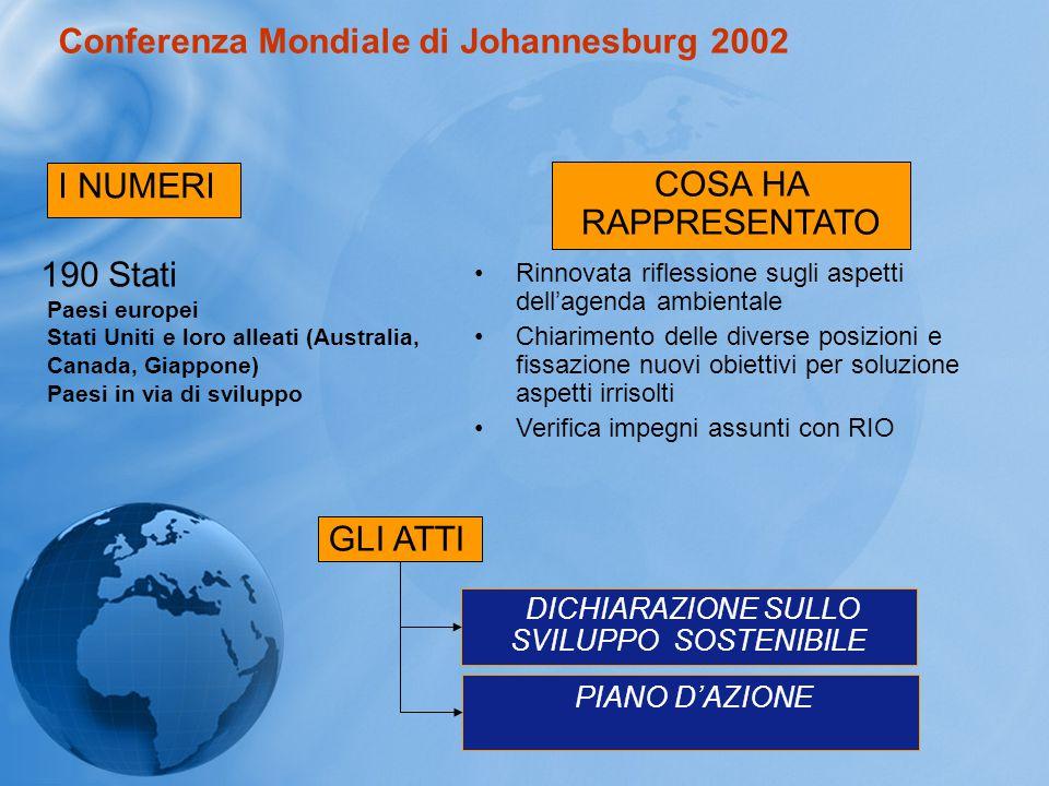 Conferenza Mondiale di Johannesburg 2002