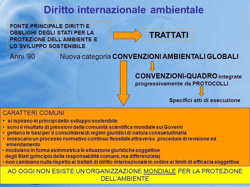 Diritto internazionale ambientale