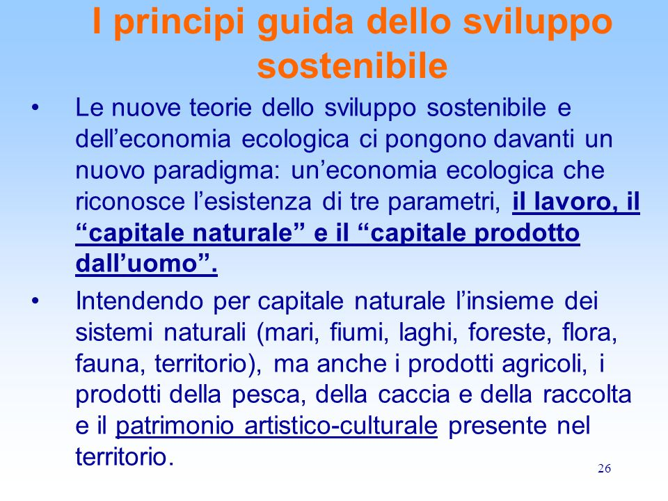 I principi guida dello sviluppo sostenibile