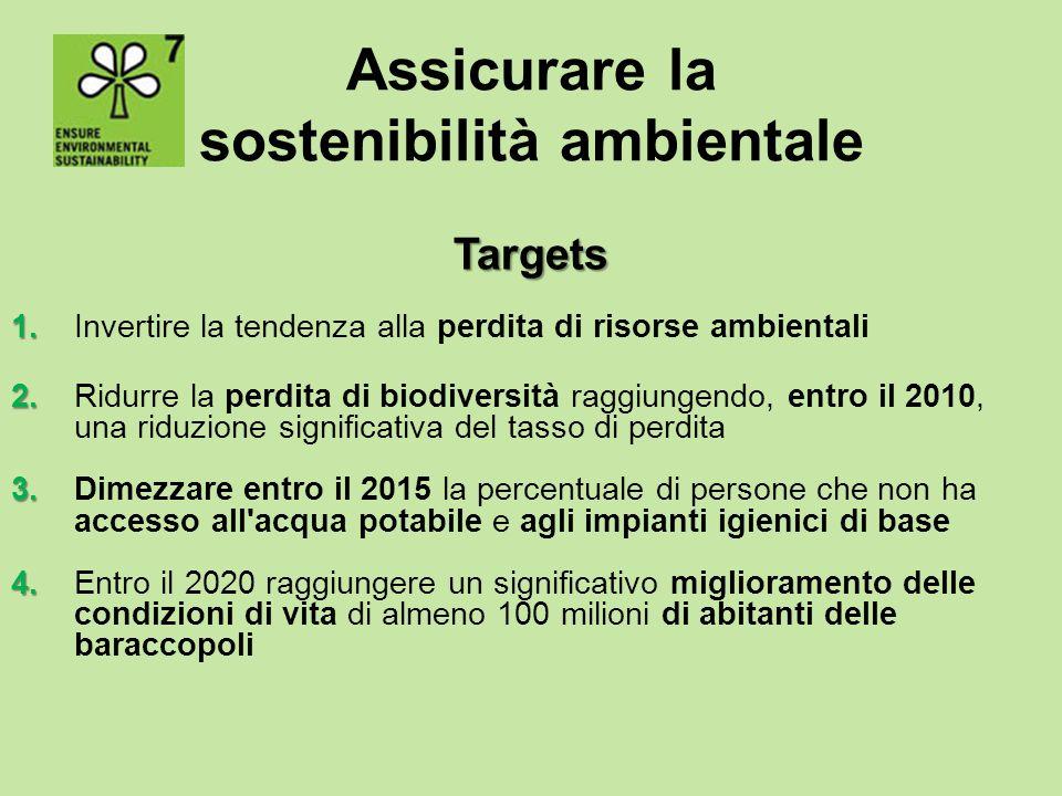 Assicurare la sostenibilità ambientale