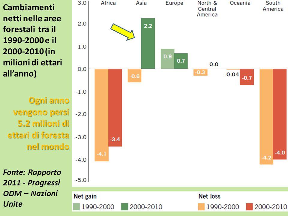 Ogni anno vengono persi 5.2 milioni di ettari di foresta nel mondo