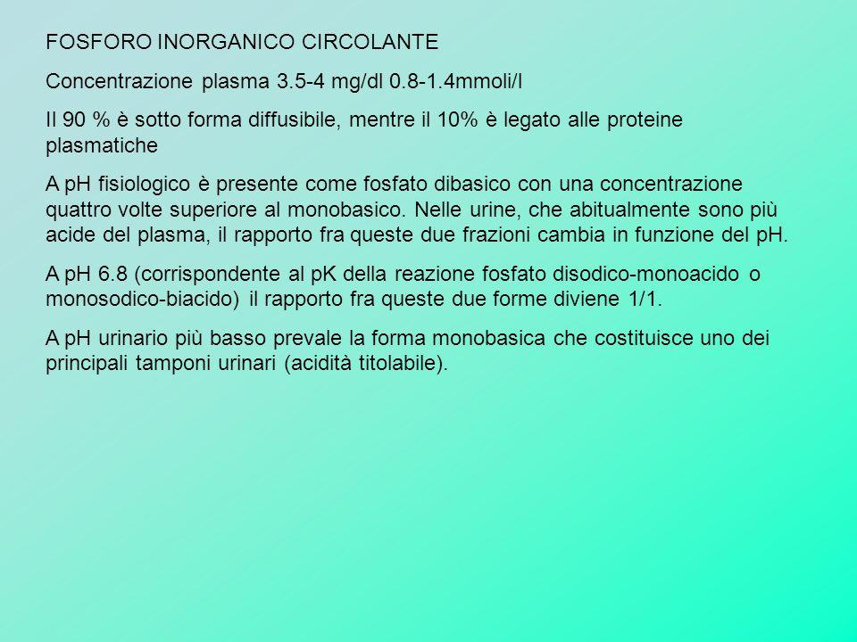 FOSFORO INORGANICO CIRCOLANTE
