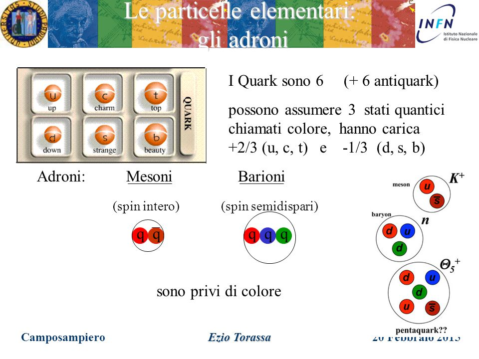 Le particelle elementari: gli adroni
