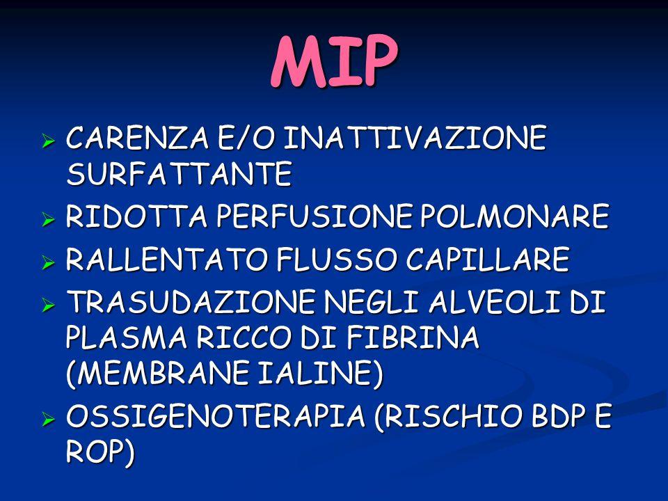 MIP CARENZA E/O INATTIVAZIONE SURFATTANTE RIDOTTA PERFUSIONE POLMONARE