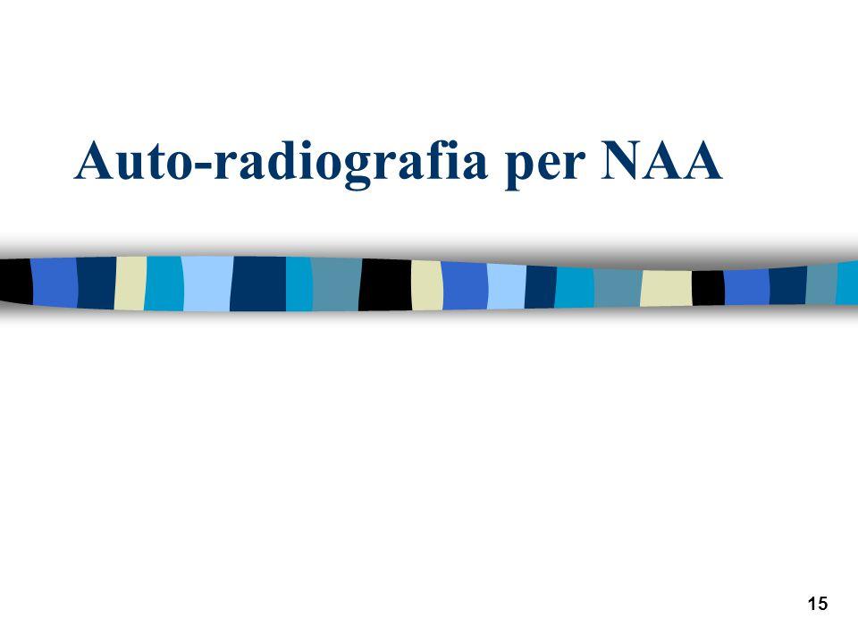 Auto-radiografia per NAA
