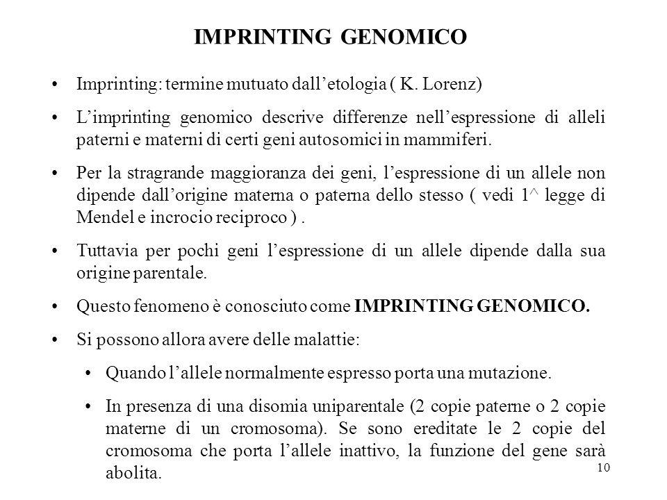 IMPRINTING GENOMICO Imprinting: termine mutuato dall'etologia ( K. Lorenz)
