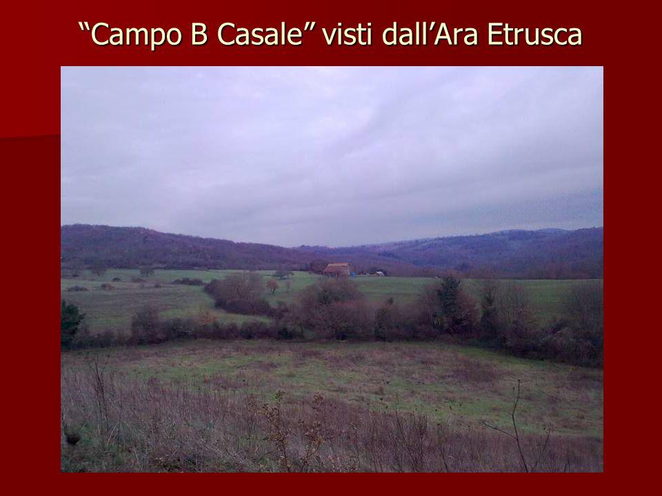 Campo B Casale visti dall'Ara Etrusca