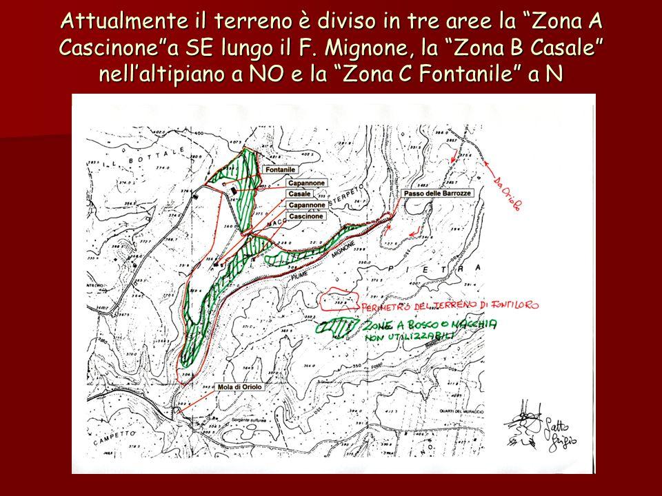 Attualmente il terreno è diviso in tre aree la Zona A Cascinone a SE lungo il F.