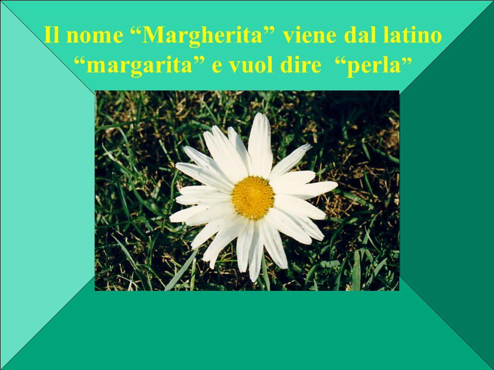 Il nome Margherita viene dal latino margarita e vuol dire perla
