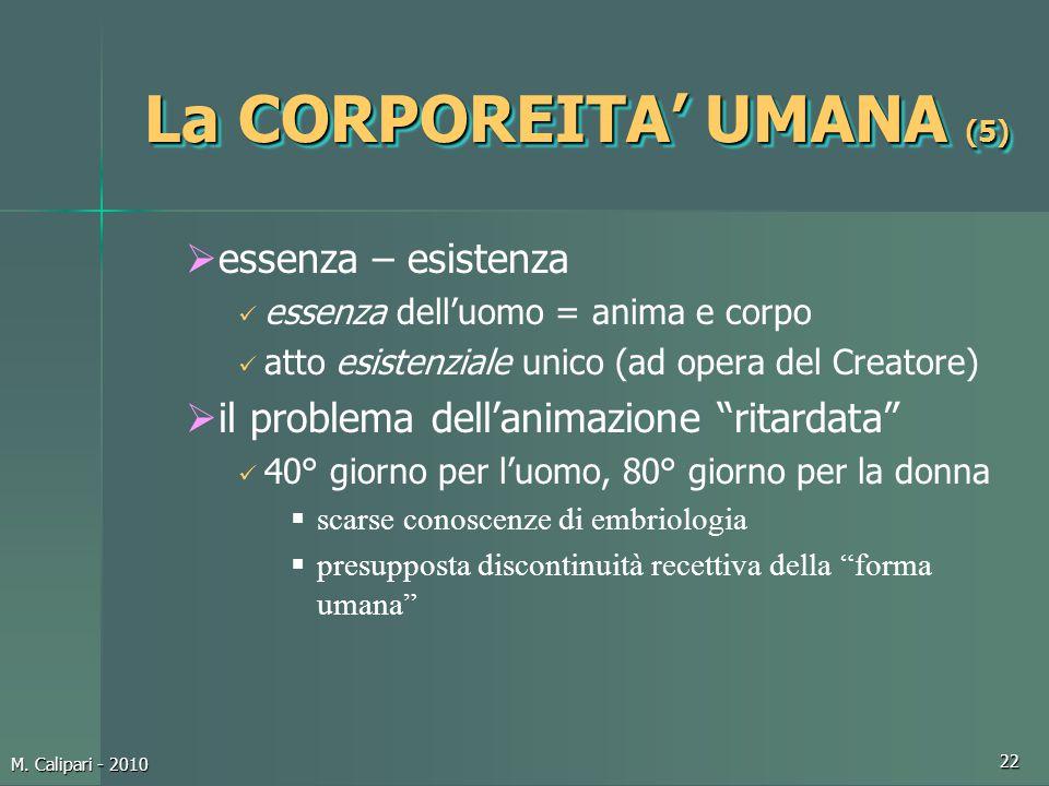 La CORPOREITA' UMANA (5)