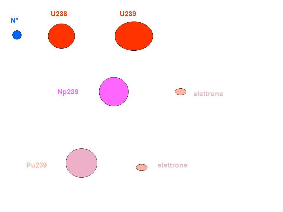 U238 U239 N° Np239 elettrone Pu239 elettrone