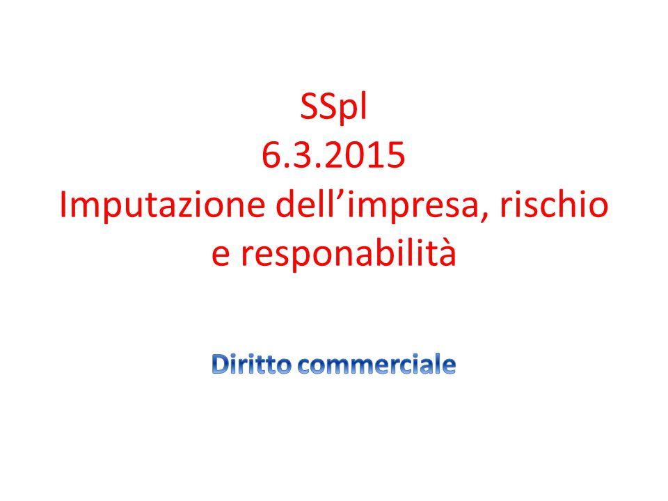 SSpl 6.3.2015 Imputazione dell'impresa, rischio e responabilità