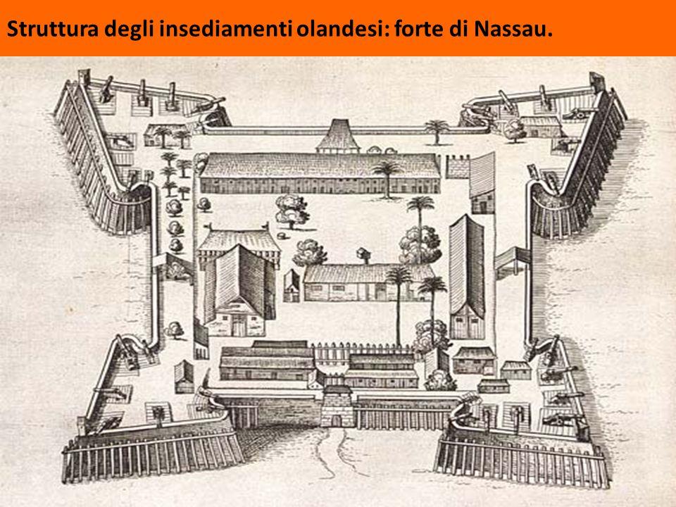 Struttura degli insediamenti olandesi: forte di Nassau.