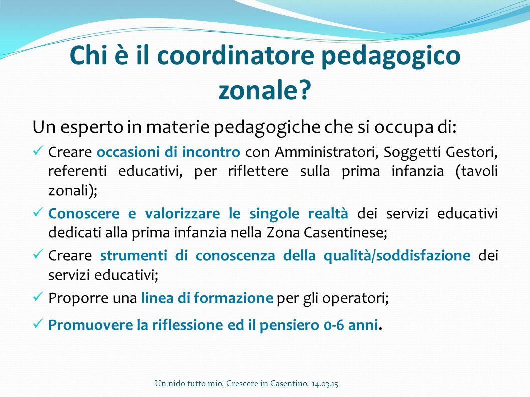 Chi è il coordinatore pedagogico zonale