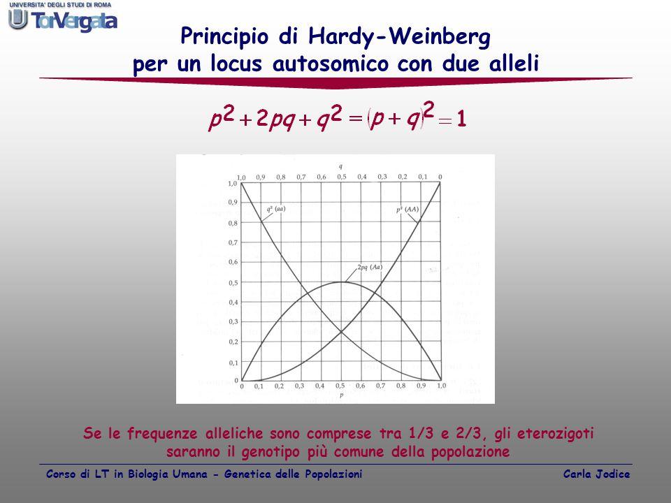Principio di Hardy-Weinberg per un locus autosomico con due alleli