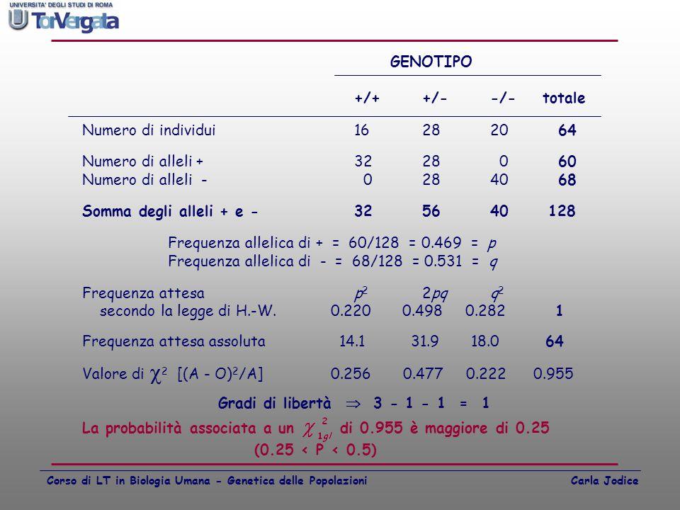 Frequenza allelica di + = 60/128 = 0.469 = p