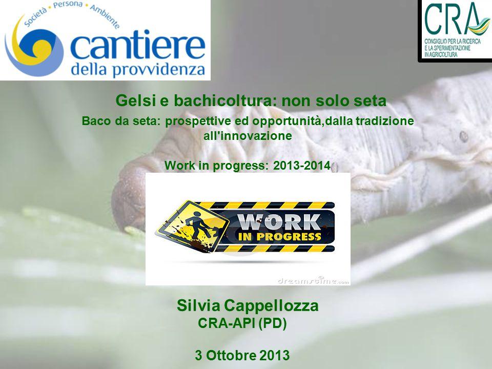 Silvia Cappellozza CRA-API (PD) 3 Ottobre 2013