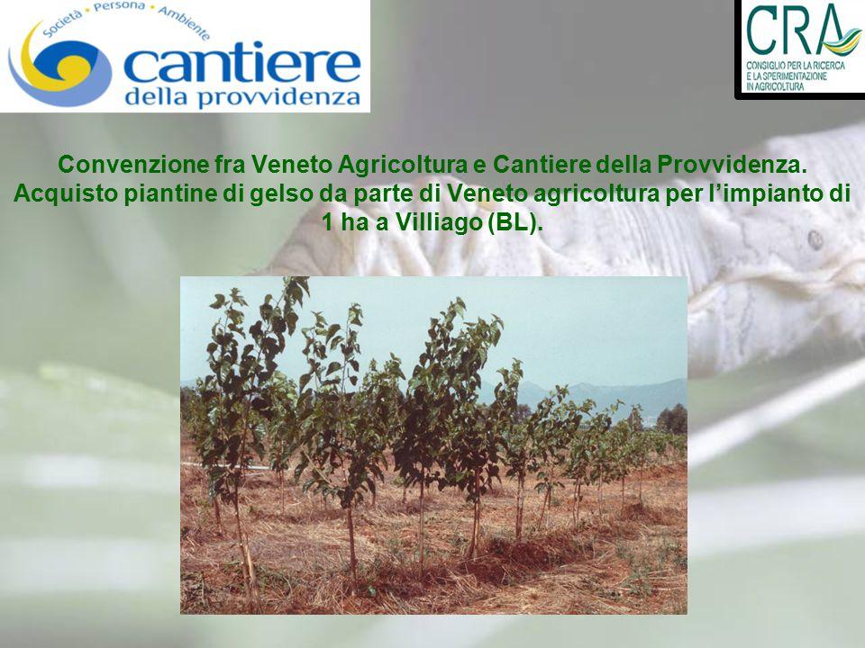 Convenzione fra Veneto Agricoltura e Cantiere della Provvidenza