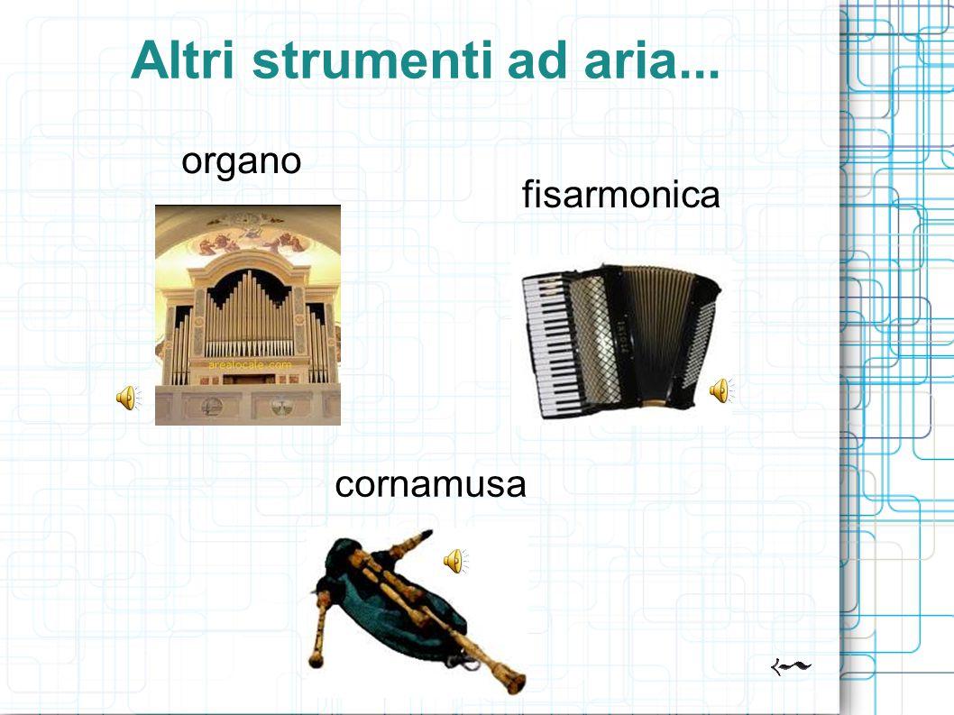 Altri strumenti ad aria...