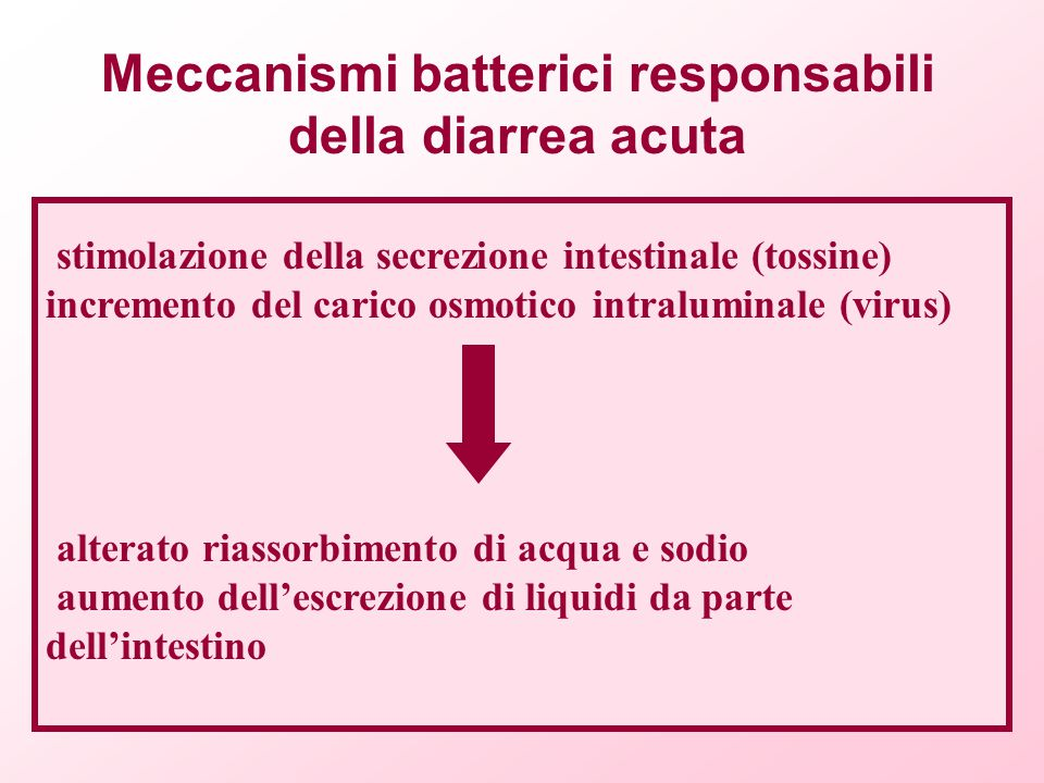 Meccanismi batterici responsabili della diarrea acuta