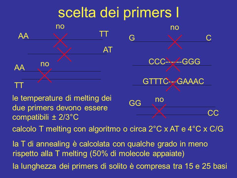 scelta dei primers I no no TT AA G C AT CCC------GGG AA TT no