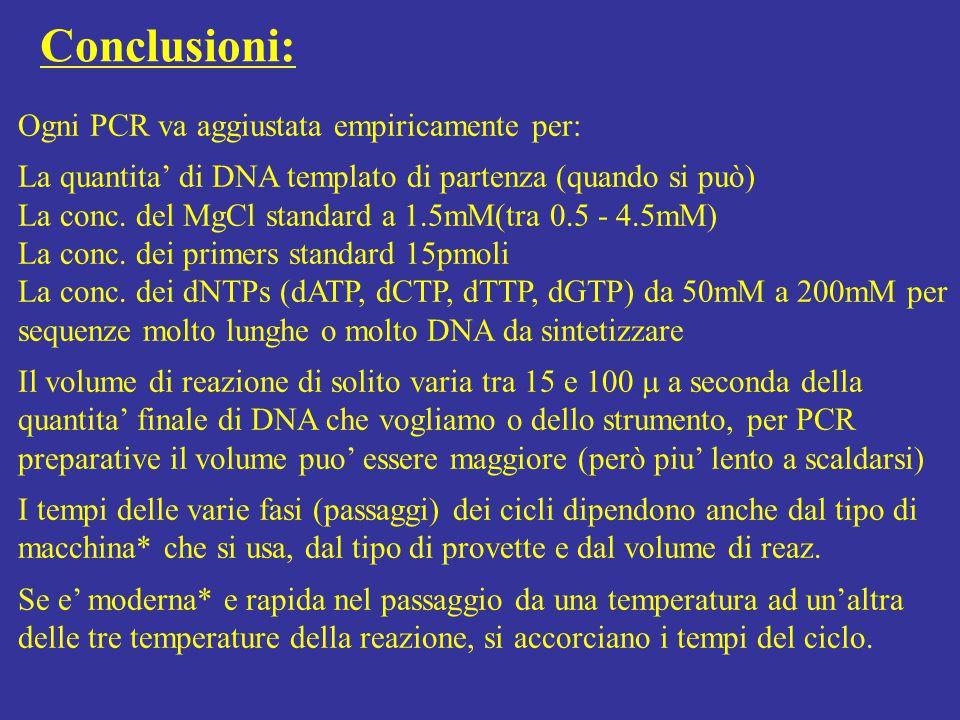 Conclusioni: Ogni PCR va aggiustata empiricamente per: