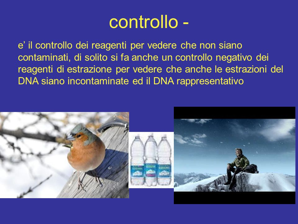 controllo -