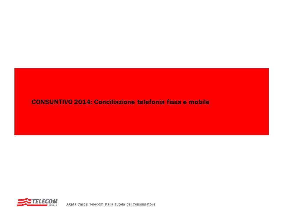 CONSUNTIVO 2014: Conciliazione telefonia fissa e mobile
