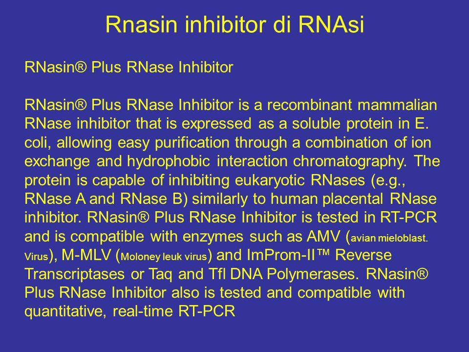 Rnasin inhibitor di RNAsi