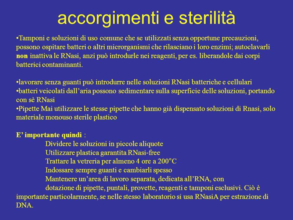 accorgimenti e sterilità