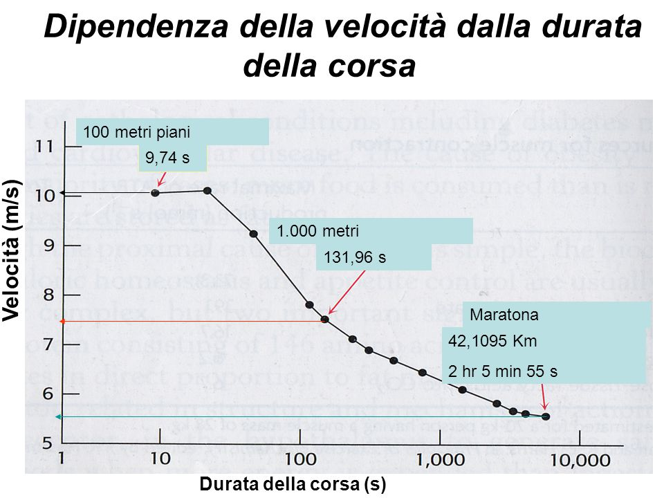Dipendenza della velocità dalla durata della corsa