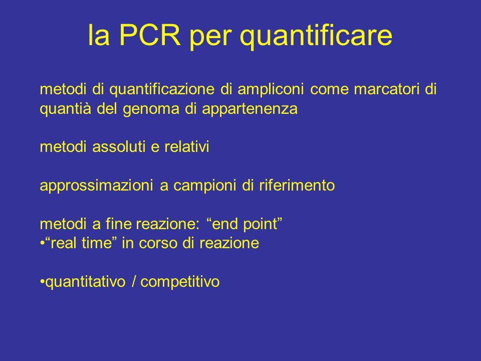 la PCR per quantificare