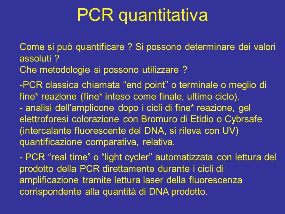 PCR quantitativa Come si può quantificare Si possono determinare dei valori assoluti Che metodologie si possono utilizzare