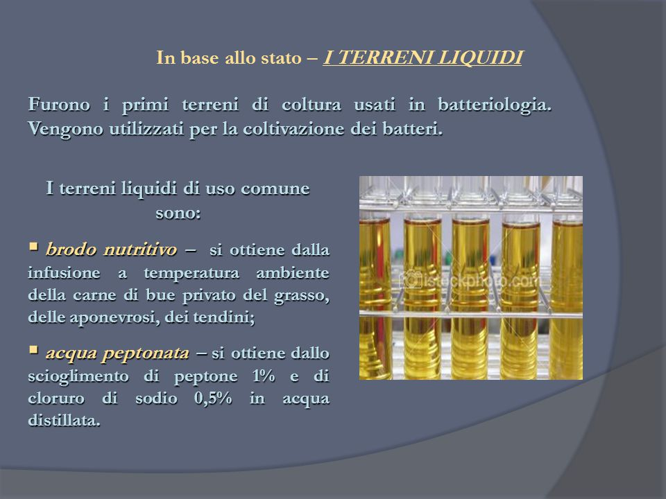 I terreni liquidi di uso comune sono: