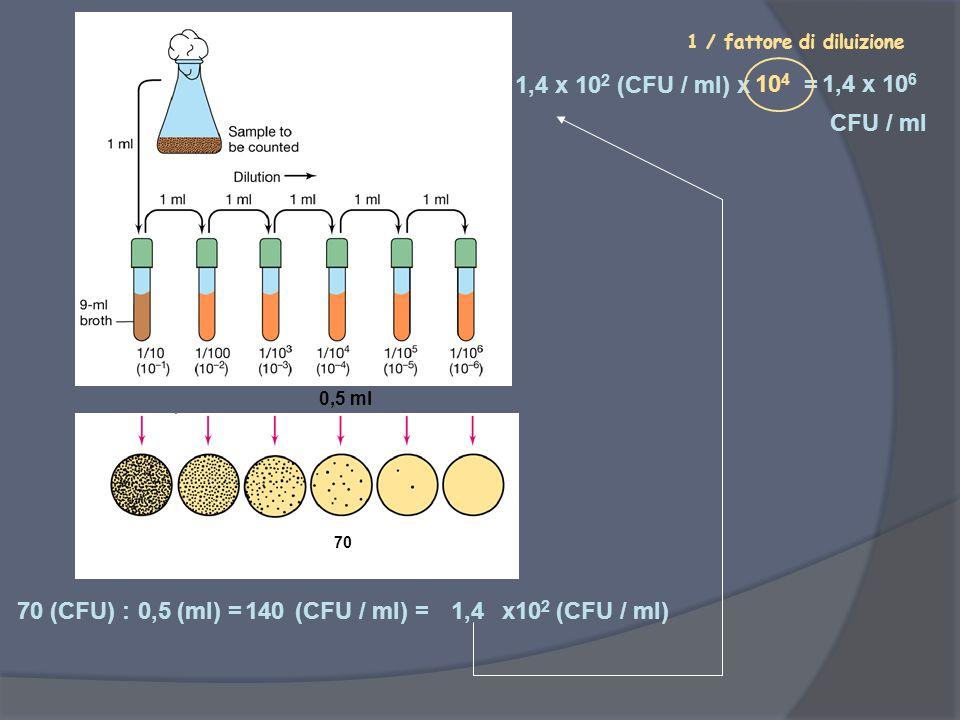 70 (CFU) : (ml) = (CFU / ml) = x102 (CFU / ml) 0,5 140 1,4