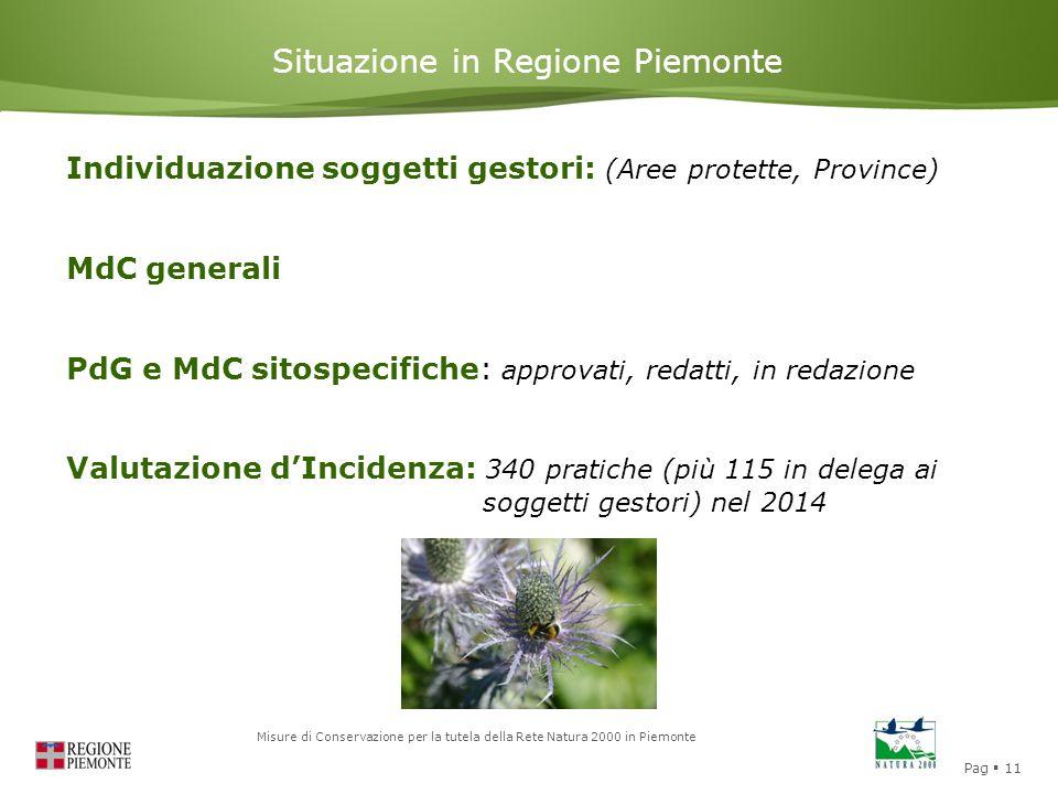 Situazione in Regione Piemonte