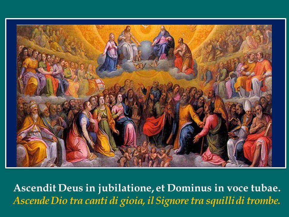 Ascendit Deus in jubilatione, et Dominus in voce tubae.