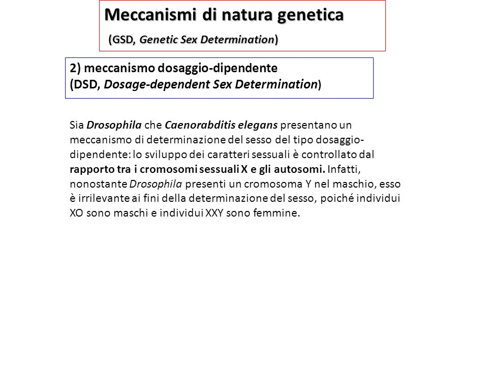 Meccanismi di natura genetica (GSD, Genetic Sex Determination)