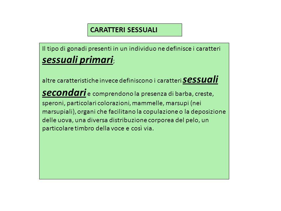 CARATTERI SESSUALI Il tipo di gonadi presenti in un individuo ne definisce i caratteri sessuali primari;