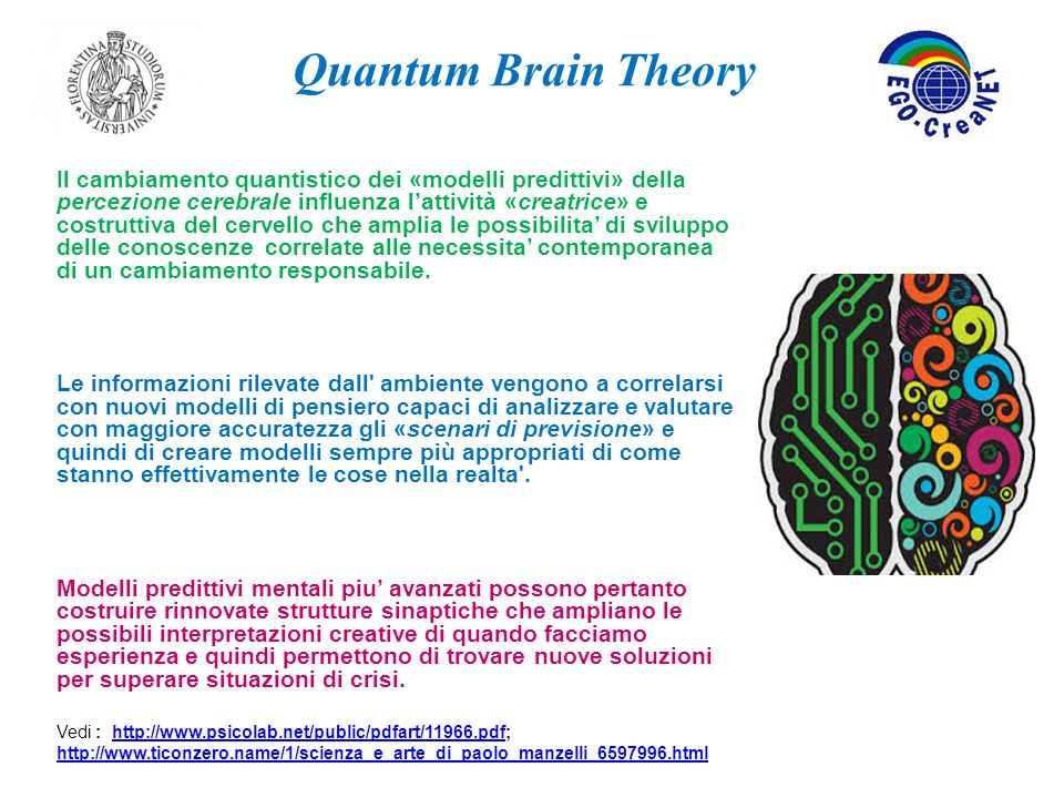 Quantum Brain Theory