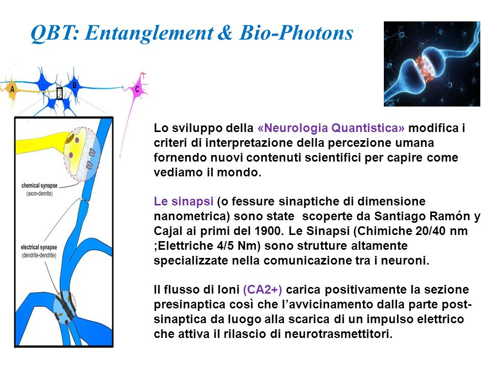QBT: Entanglement & Bio-Photons